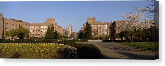 Washington State University Canvas Print - Trees In The Lawn Of A University by Panoramic Images