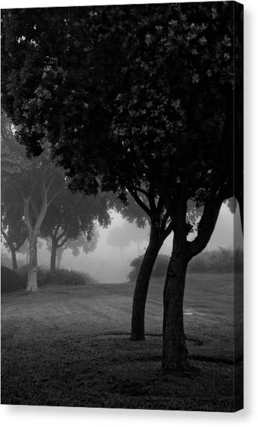 Trees In The Midst 1 Canvas Print