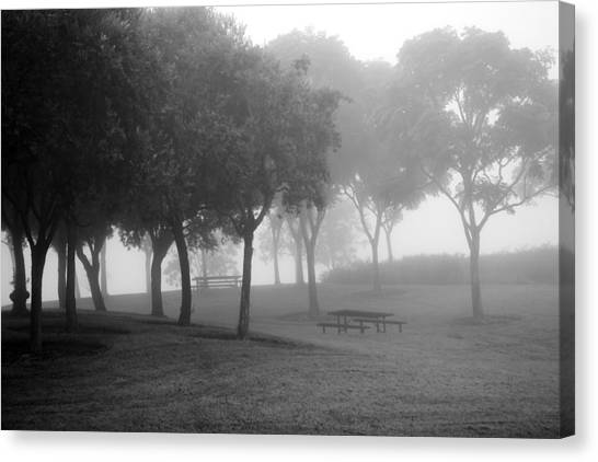 Trees In The Midst 3 Canvas Print
