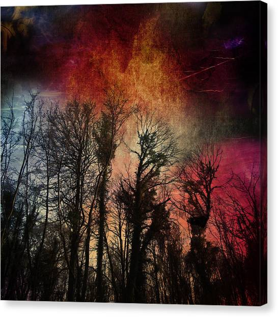 Trees No.7  Canvas Print
