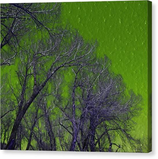 Trees On Green Sky Canvas Print