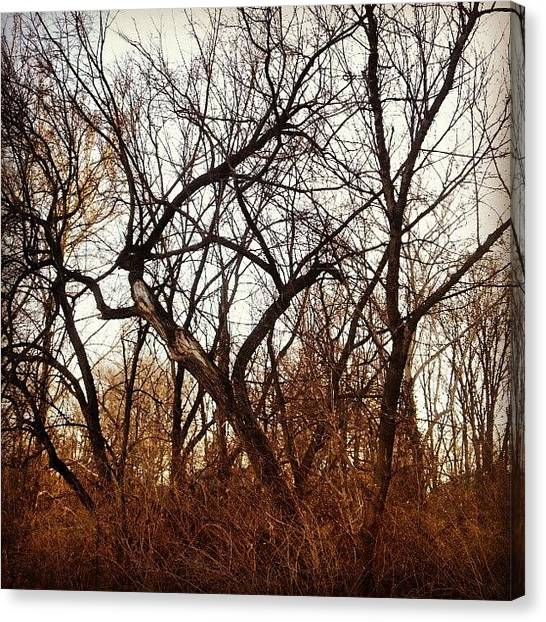 Instamood Canvas Print - Trees With Figures by Genevieve Esson