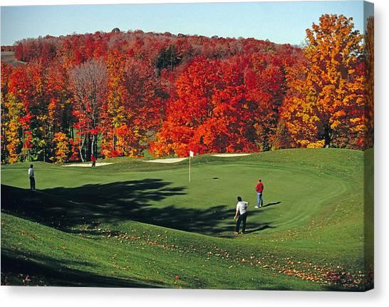 Treetops Golf Canvas Print