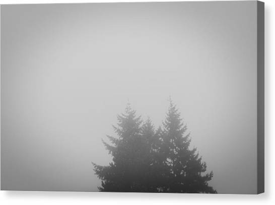 Treetops In Fog Canvas Print