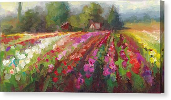 Trespassing Dahlia Field Landscape Canvas Print