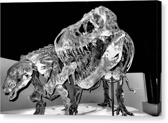 Tyrannosaurus Canvas Print - Trex by Dan Sproul
