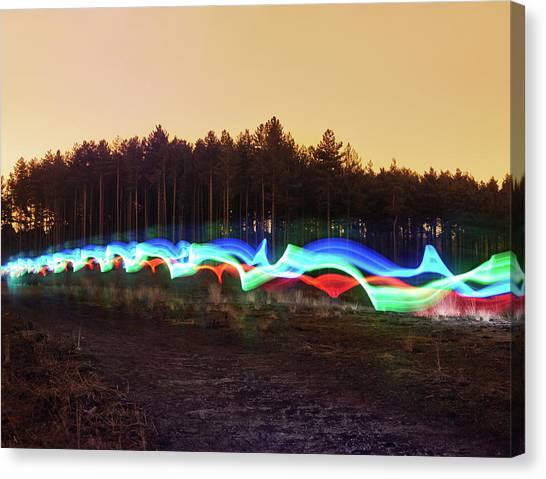 Tri-colour Light Trail In Heath Canvas Print by Tim Robberts