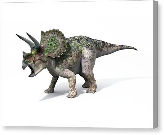 Triceratops Canvas Print - Triceratops Dinosaur by Jose Antonio Penas/science Photo Library