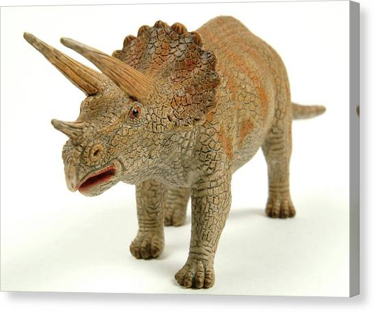 Triceratops Canvas Print - Triceratops Dinosaur Model by Natural History Museum, London/science Photo Library