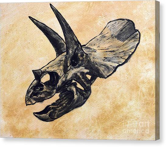 Profile Canvas Print - Triceratops Dinosaur Skull by Harm Plat