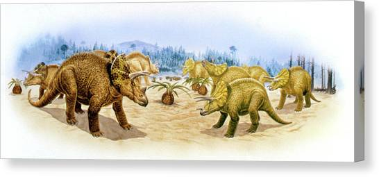 Triceratops Canvas Print - Triceratops Dinosaurs by Deagostini/uig