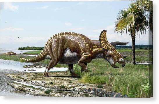 Triceratops Canvas Print - Triceratops Horridus Dinosaur by Julius T Csotonyi/science Photo Library