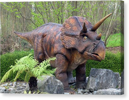 Triceratops Canvas Print - Triceratops Model II by Dirk Wiersma