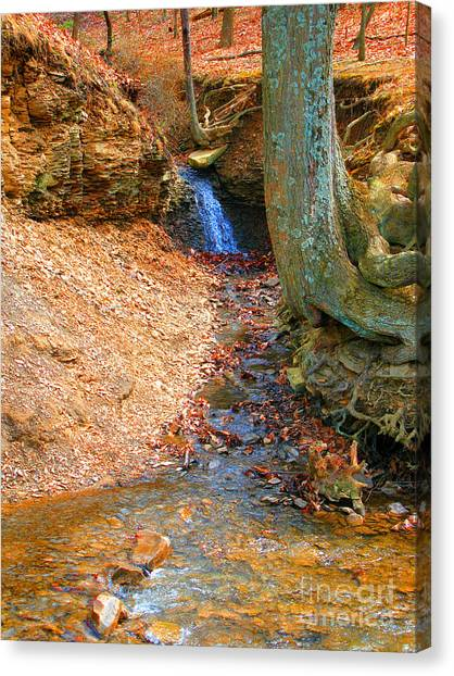 Trickling Waterfall By Shellhammer Canvas Print