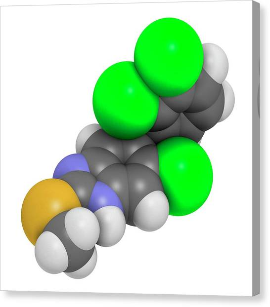 Triclabendazole Anthelmintic Drug Canvas Print by Molekuul