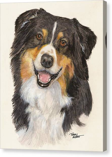 Tricolor Australian Shepherd Canvas Print