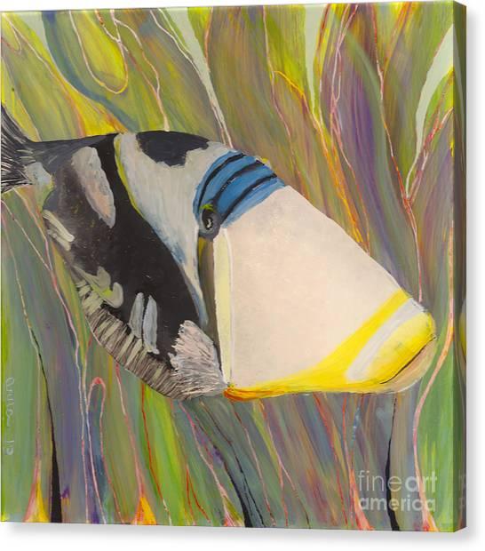 Triggerfish 2 Canvas Print