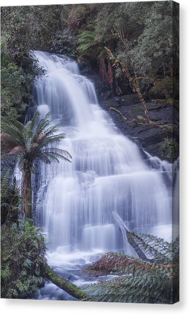Great Otway National Park Canvas Print - Triplet Falls by Shari Mattox