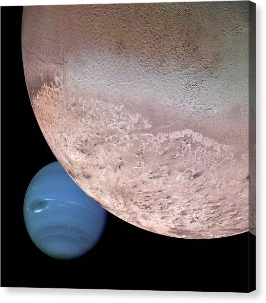 Neptune Canvas Print - Triton And Neptune by Nasa/jpl/usgs/science Photo Library