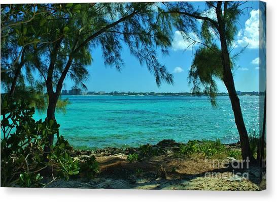 Tropical Aqua Blue Waters  Canvas Print