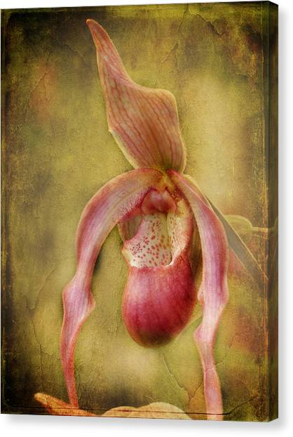Tropical Enchantment Canvas Print
