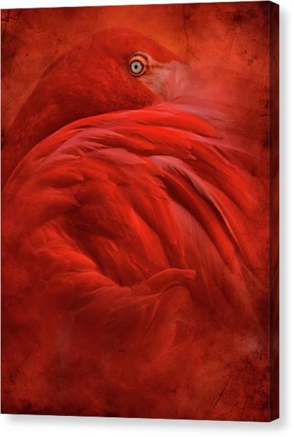 Colorful Bird Canvas Print - Tropical by Jeffrey Hummel