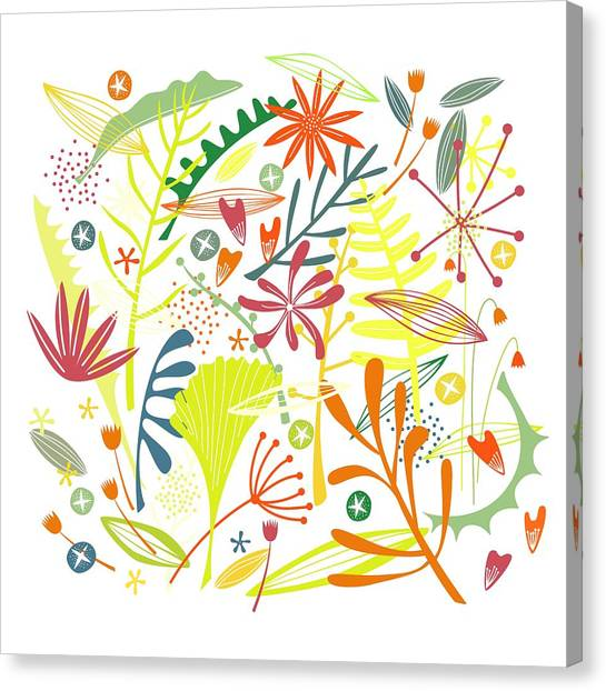 Tropical Plant Canvas Print - Tropical by Nic Squirrell