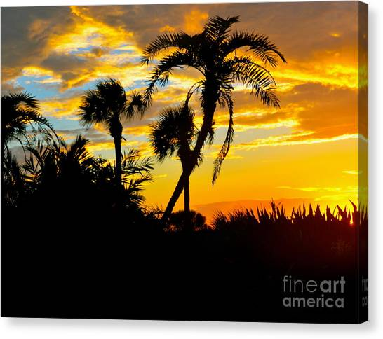 Palm Trees Sunsets Canvas Print - Tropical Palms by Debbi Granruth