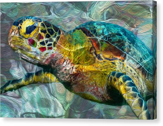 Scuba Diving Canvas Print - Tropical Sea Turtle by Jack Zulli