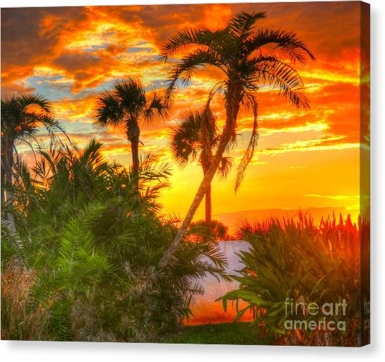 Palm Trees Sunsets Canvas Print - Tropical Sunset by Debbi Granruth