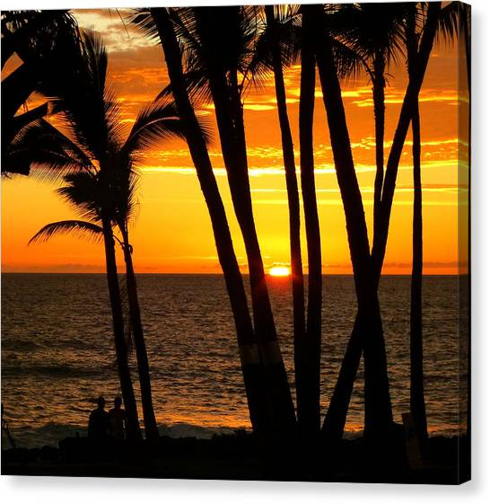 Palm Trees Sunsets Canvas Print - Tropical Sunset by Lori Seaman