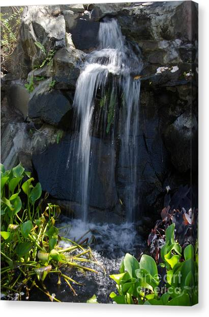 Tropical Waterfall  Canvas Print