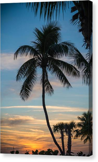 Palm Trees Sunsets Canvas Print - Tropics by Kristopher Schoenleber