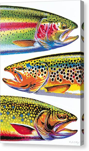 Dad Canvas Print - Trout Abstraction by JQ Licensing