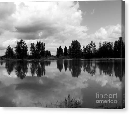 Trout Pond Reflection Canvas Print