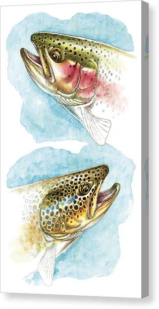 Trout Canvas Print - Trout Study by JQ Licensing