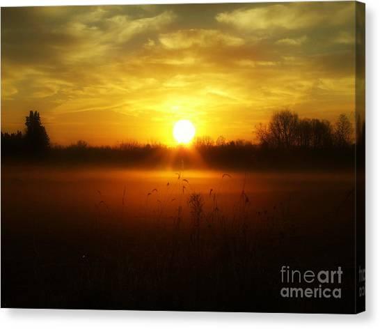 true Beauty in Light II Canvas Print