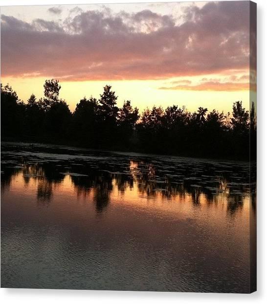 Wetlands Canvas Print - True Reflection by Stefanie Roberts