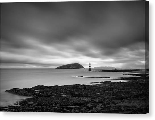 Puffins Canvas Print - Trwyn Du Lighthouse 1 by Dave Bowman