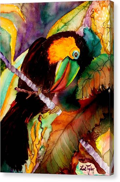 Toucans Canvas Print - Tu Can Toucan by Lil Taylor