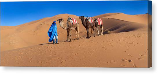 Sahara Desert Canvas Print - Tuareg Man Leading Camel Train by Panoramic Images