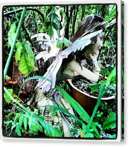 Fairies Canvas Print - #tuesdays #nature #overgrown #garden by Ragenangel -s