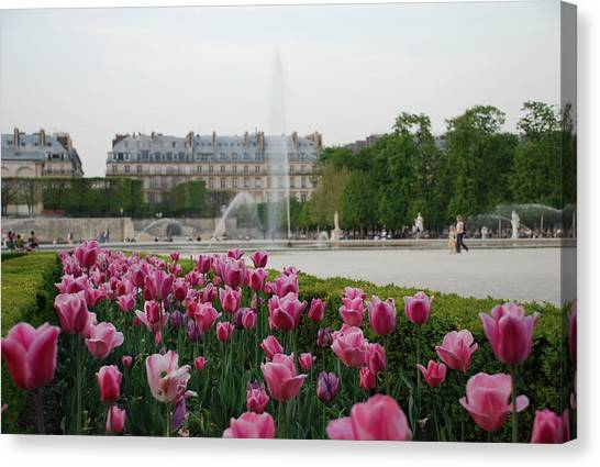 Tuileries Garden In Bloom Canvas Print