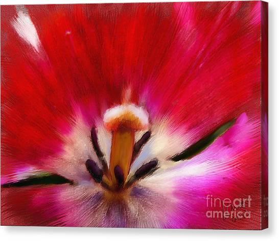 Tulip 7 Canvas Print