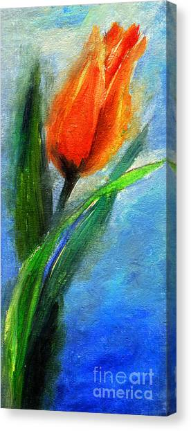 Tulip - Flower For You Canvas Print