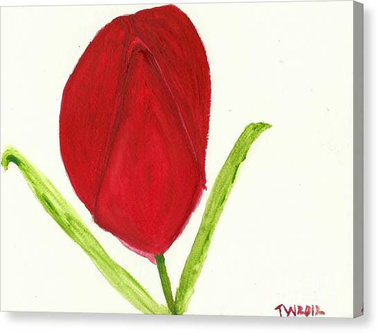Tulip Of The Heart Canvas Print