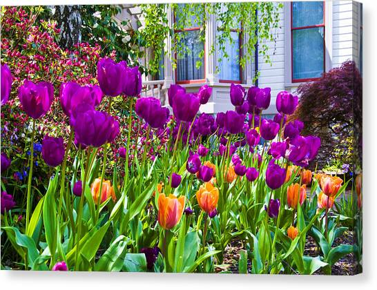 Tulips And Bush House Canvas Print