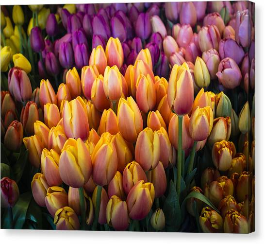 Tulips At The Market Canvas Print