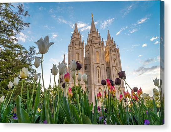 Tulips At The Temple Canvas Print