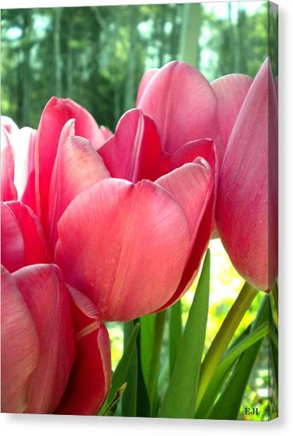 Tulips Canvas Print by Elizabeth Fredette